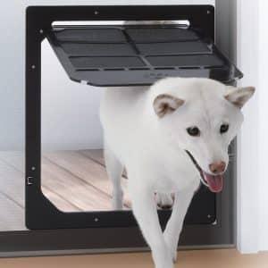 Pet Door for Screens, Medium/Large from TAKARA