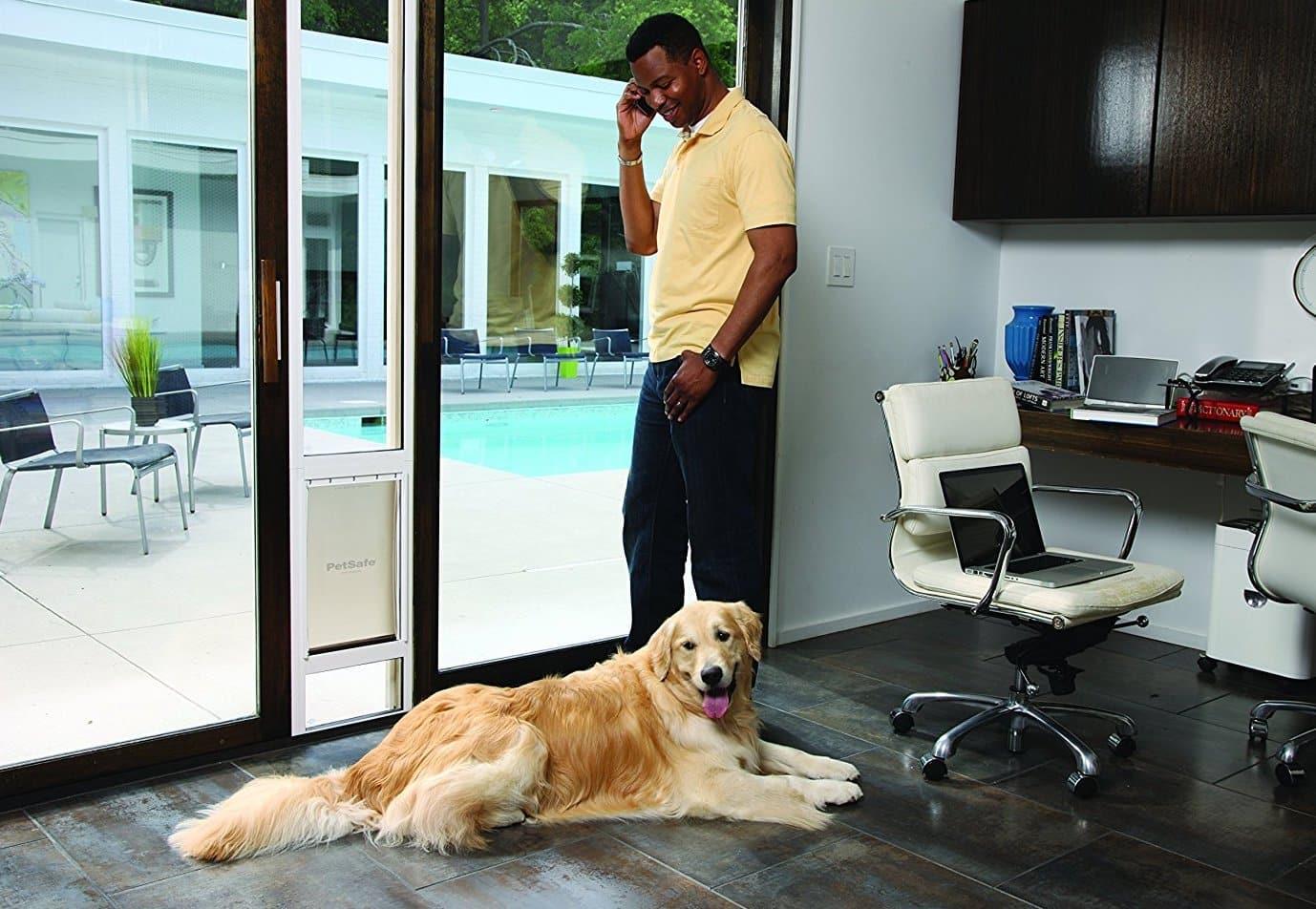 Top 10 Best Pet Doors Reviews In 2018 Petsafe Dog Door