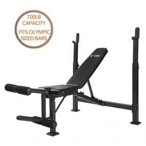 Olympic Weight Bench with Leg Developer
