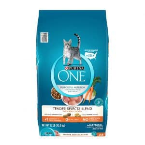 Purina ONE Dry Cat Food Tender Selects