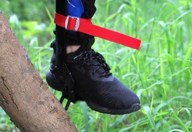 Climbing Tree Shoes
