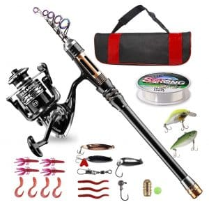 BlueFire Carbon Fiber Telescopic Fishing Rod Kit with Hooks, Line, Spinning Reel, and Carrier Bag