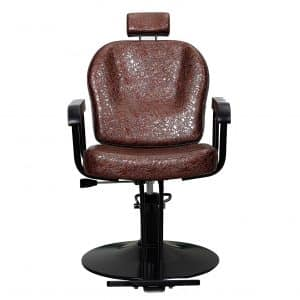 BIGARM All-Purpose Salon Chair with a Titling Function